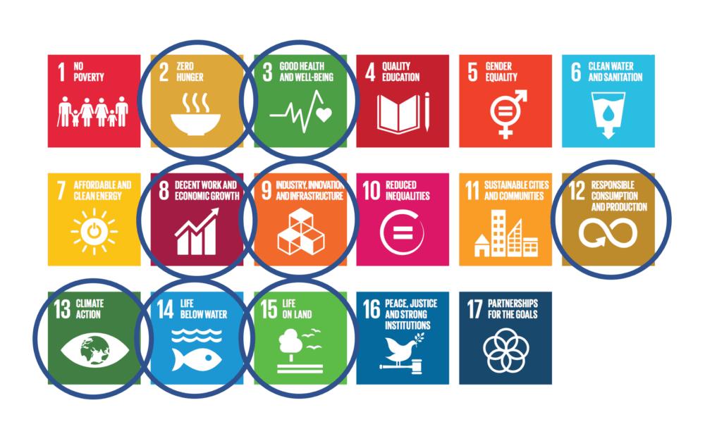 FN bærekraftsmål Seafarming Systems